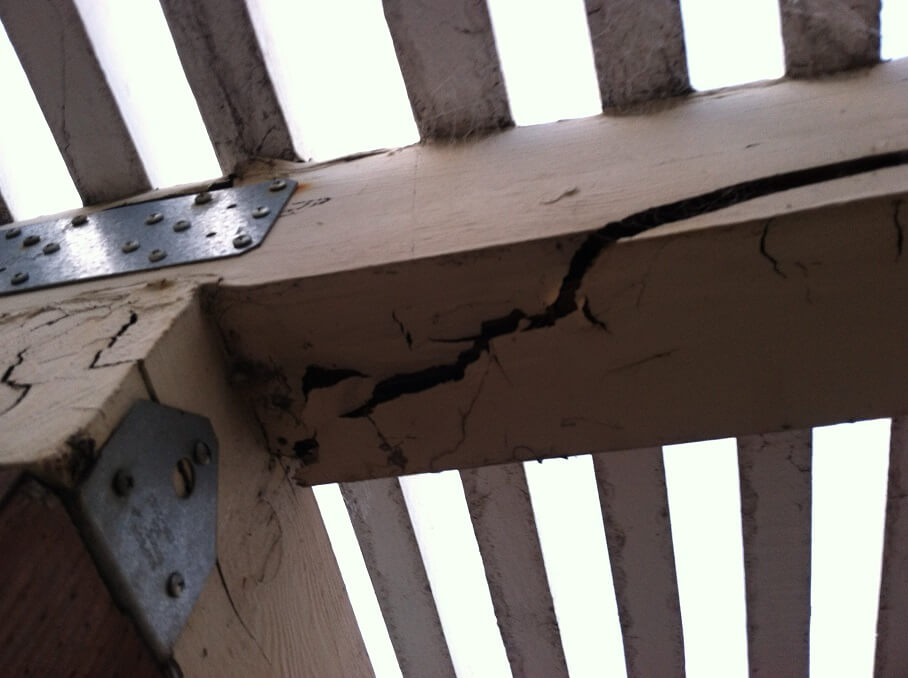 termite contol image 29