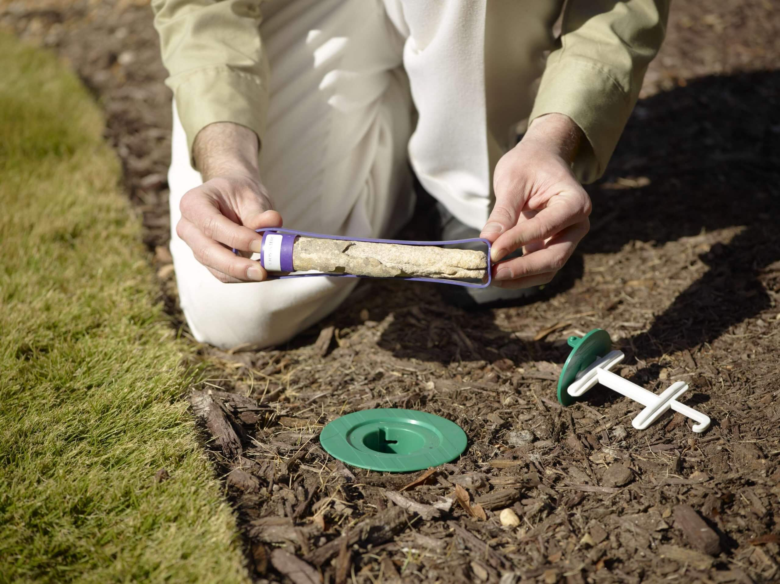 Tips for Termite Control